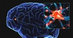 Профилактика последствий перинатального поражения центральной нервной системы